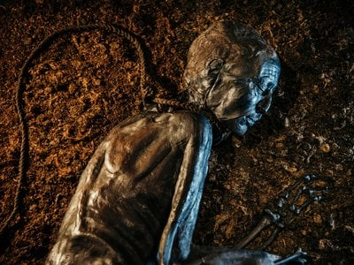 """In 1950, Tollund Man's discoverers """"found a face so fresh they could only suppose they had stumbled on a recent murder."""""""