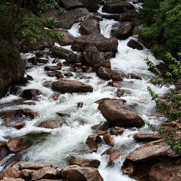 Burbling of a stream thumbnail