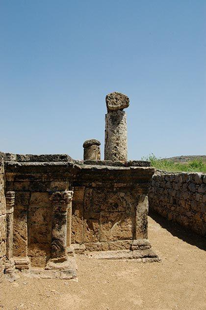 Jain Pillars in Sirkap