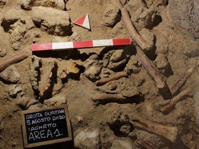 Recent research unearthed a trove of remains at a site that first yielded a Neanderthal skull in 1939.