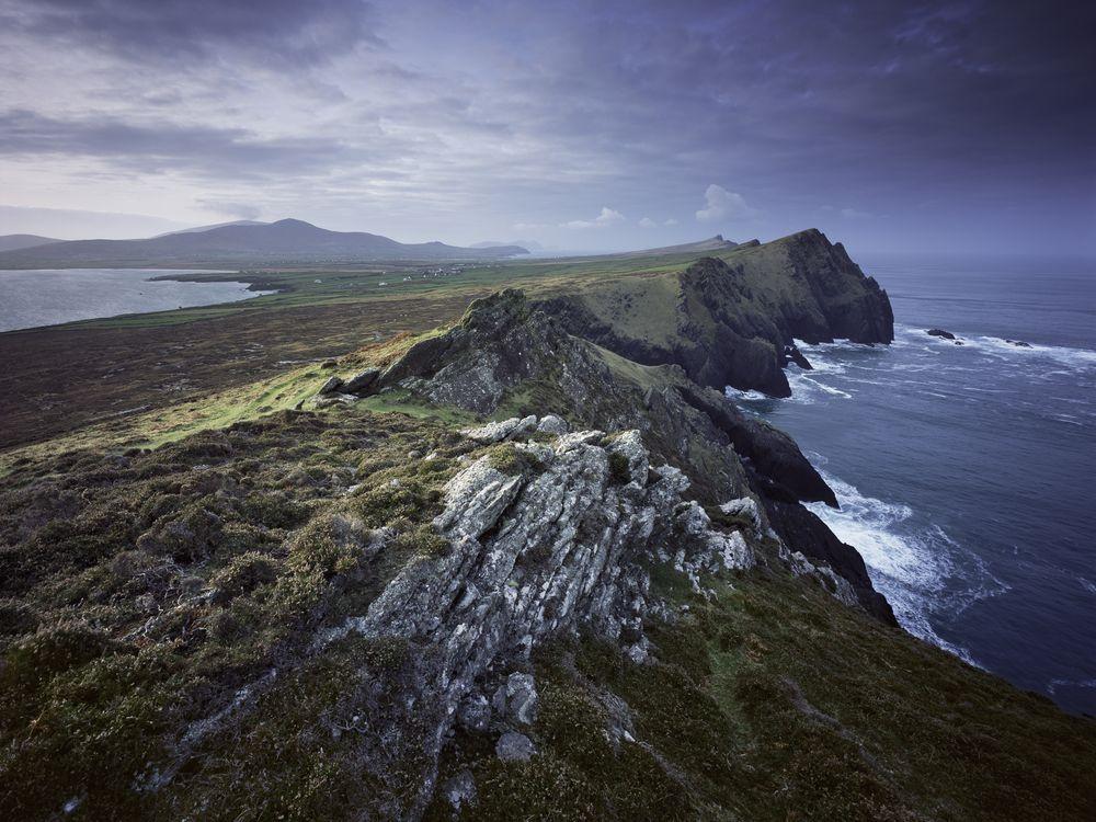 dingle-ireland-steves.jpg
