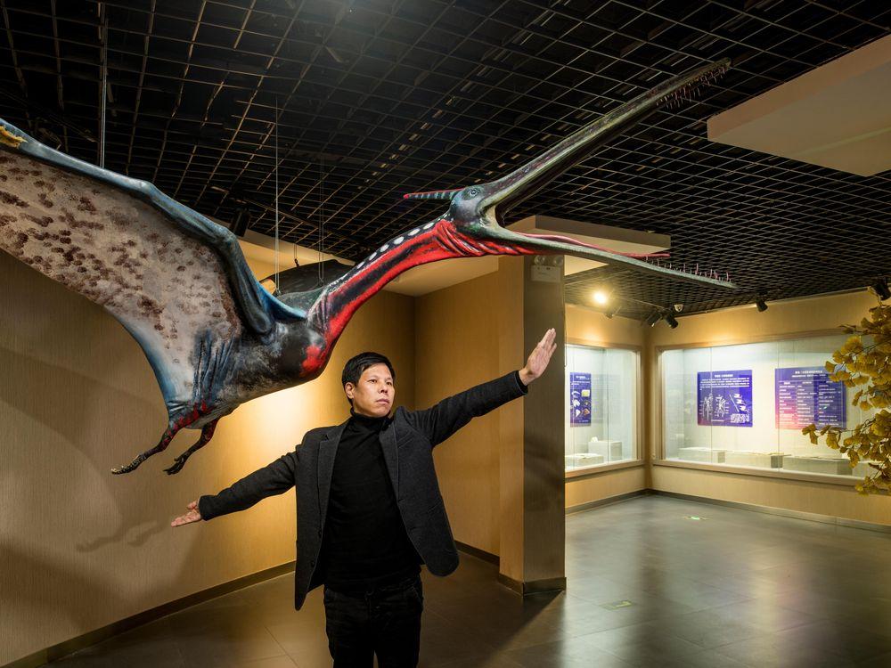 Liu Cun Yu, the director of the Beipiao Pterosaur Museum