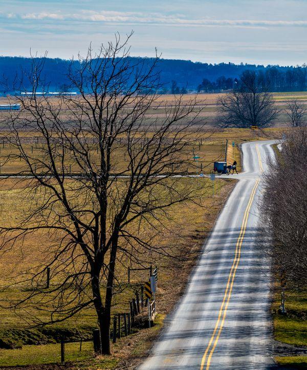 Amish Rush Hour thumbnail