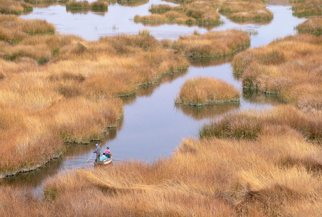 What Are North American Trout Doing in Lake Titicaca?