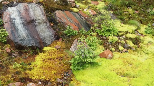 Miniature landscape found in Norway thumbnail