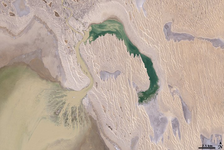Australia's Simpson Desert