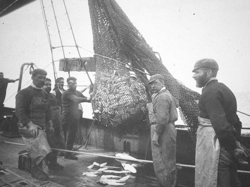 Scientists Recreate 1890s Fishing Surveys to Show How the Sea Has Changed
