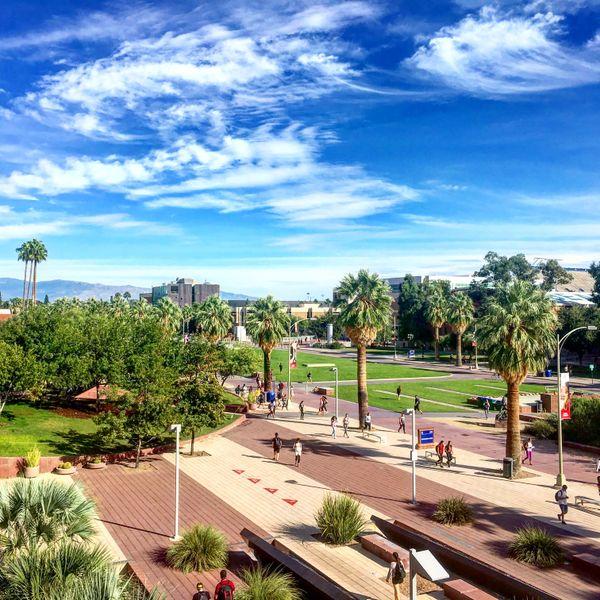 The University of Arizona thumbnail