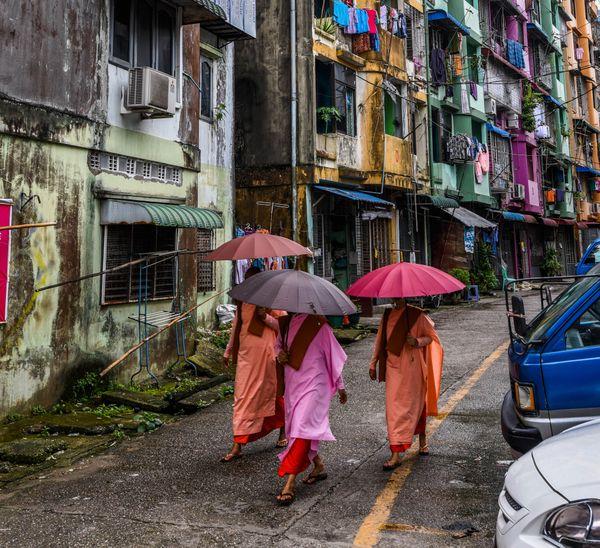 Buddist Nuns with Umbrellas thumbnail