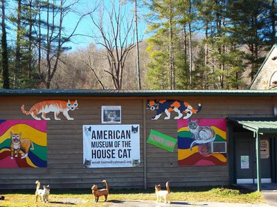 You'll have a tail to tell after visiting this North Carolina museum.