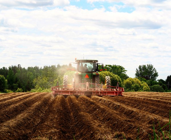 Potato planting in Aroostook County, Maine thumbnail