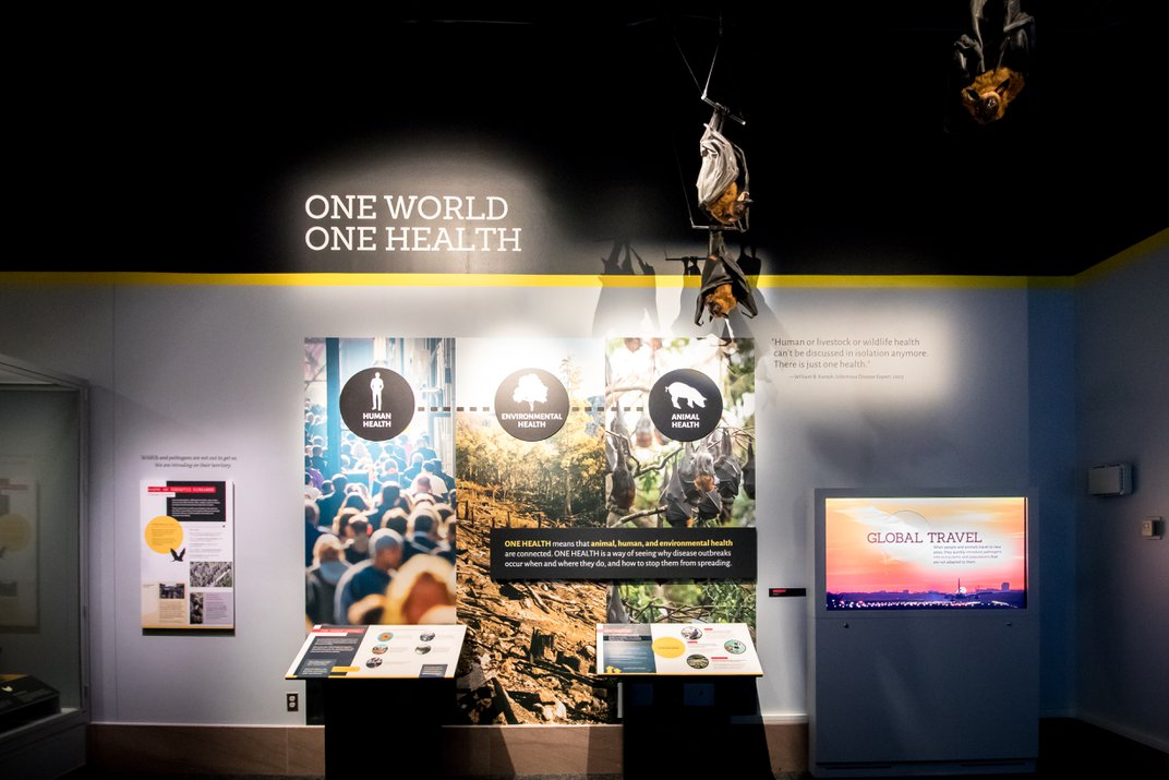 """A display on the """"One Health"""" concept in an exhibition about pandemics at the Smithsonian's National Museum of Natural History"""