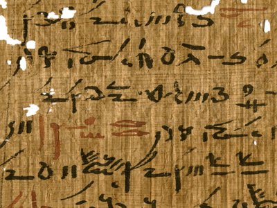 Detail of a medical treatise from the Tebtunis temple library with headings marked in red ink