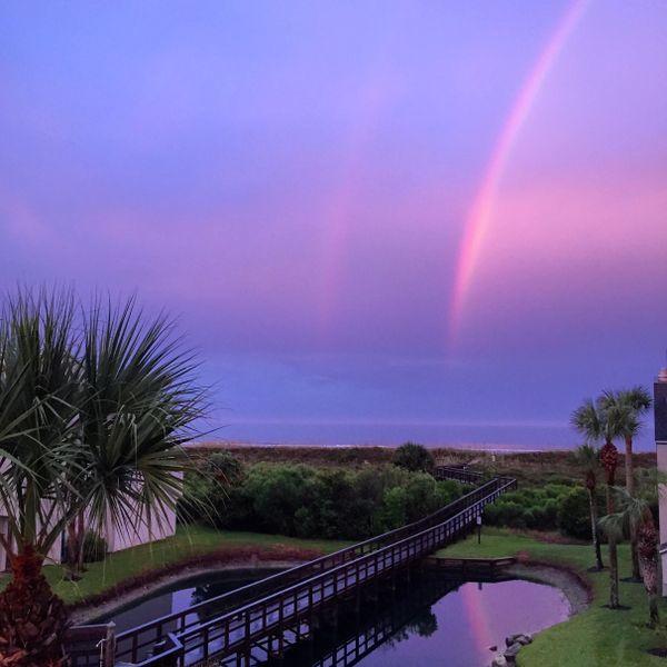 Double Floridian Rainbow thumbnail