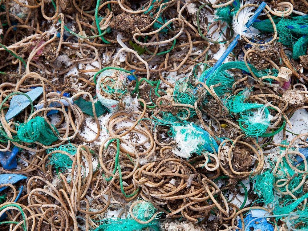 Mullion Island Waste