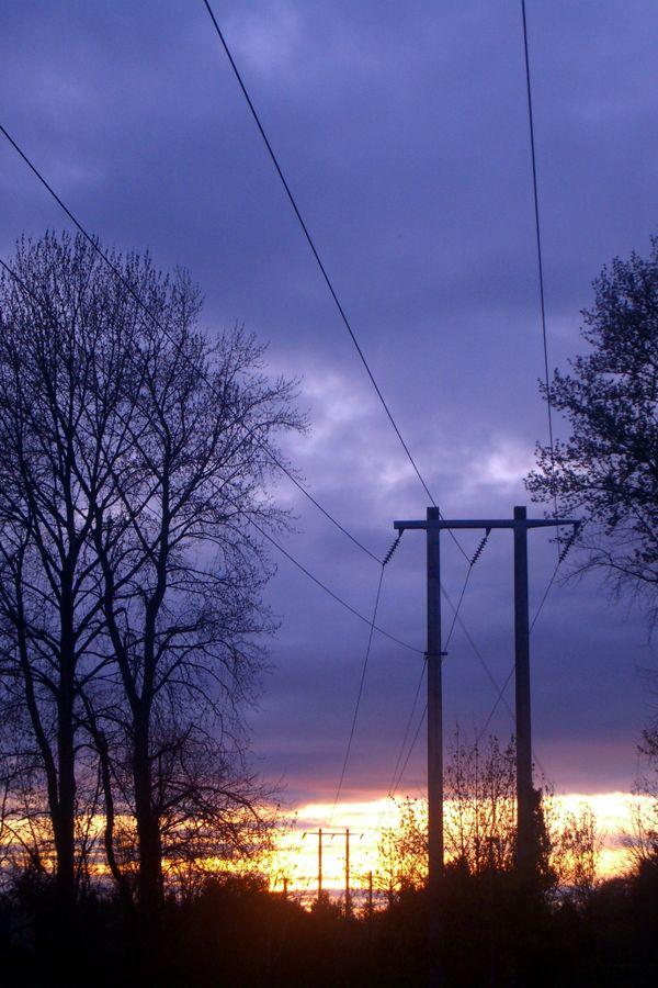 Power lines at sunset thumbnail