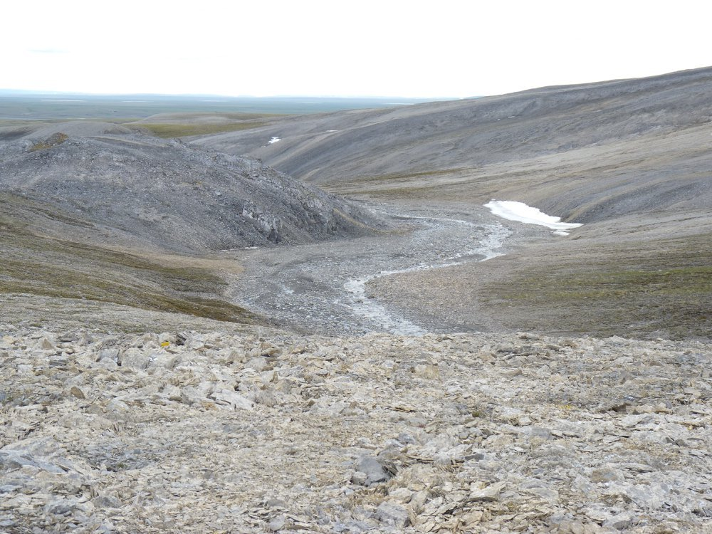 Limestone outcrop on the Taymyr Peninsula in North Siberia