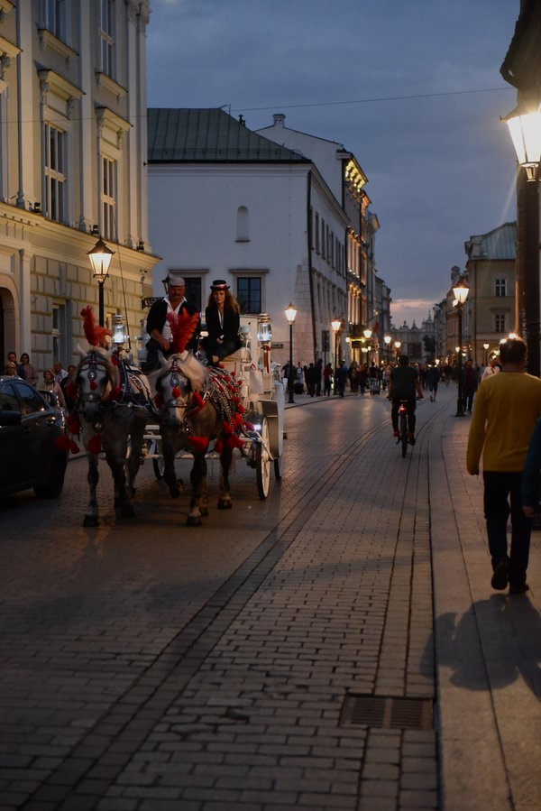 A Horse Carriage in Kraków thumbnail
