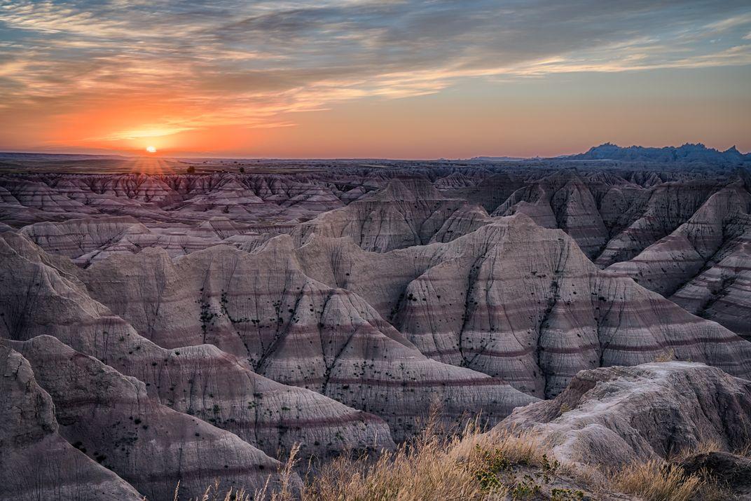 Discover South Dakota's Wild Side