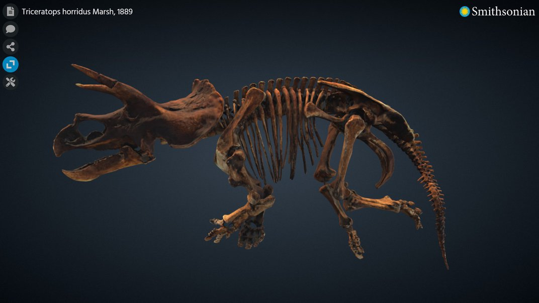 3D rendering of a triceratops skeleton on a dark background.
