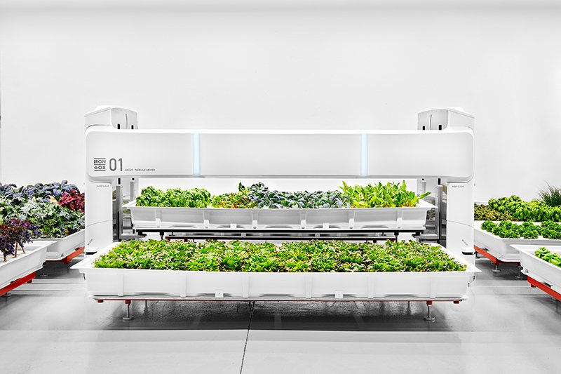 This Robotic Farming System Could Be the Answer to Labor Shortages