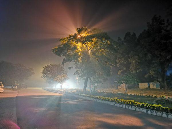 Beauty of the night thumbnail