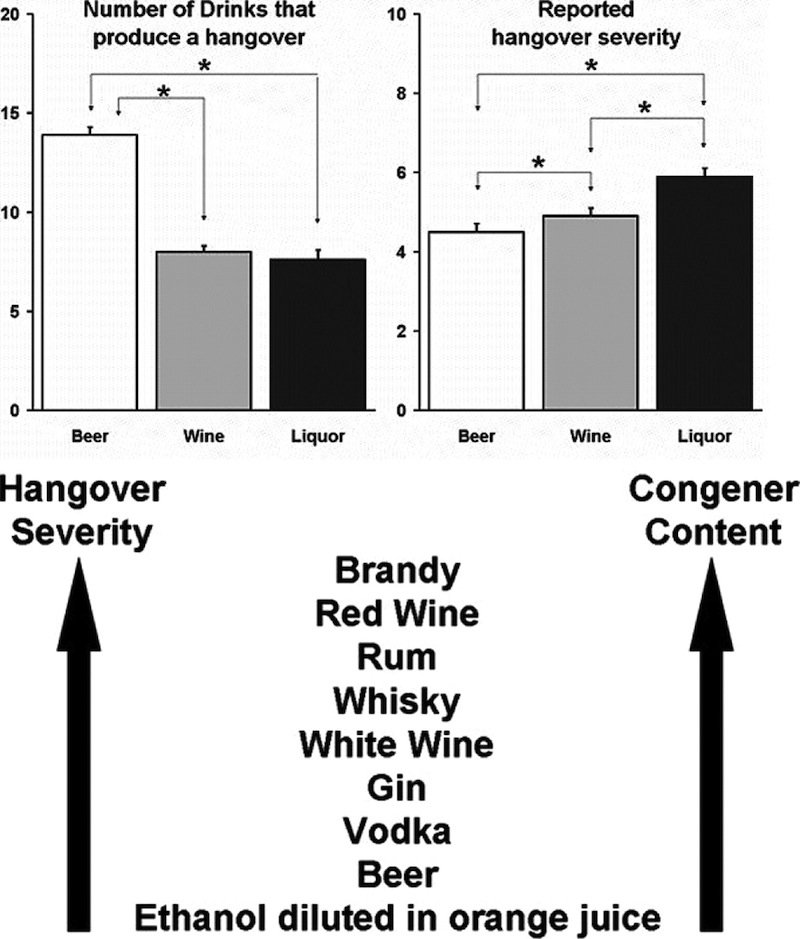 Your Complete Guide to the Science of Hangovers