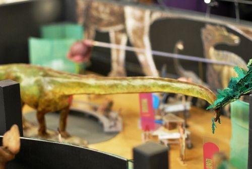 20110520083309AMNH-Mamenchisaurus.jpg