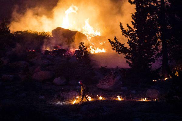 Back burn on the Caldor fire. thumbnail