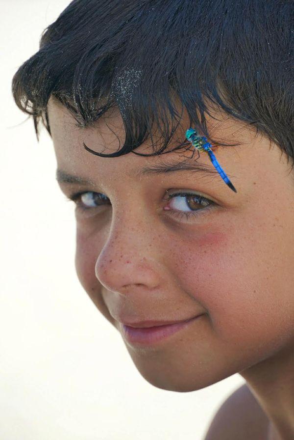 Boy and Dragonfly thumbnail