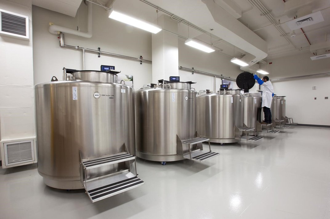 A labratory with large stainless steel storage tanks.