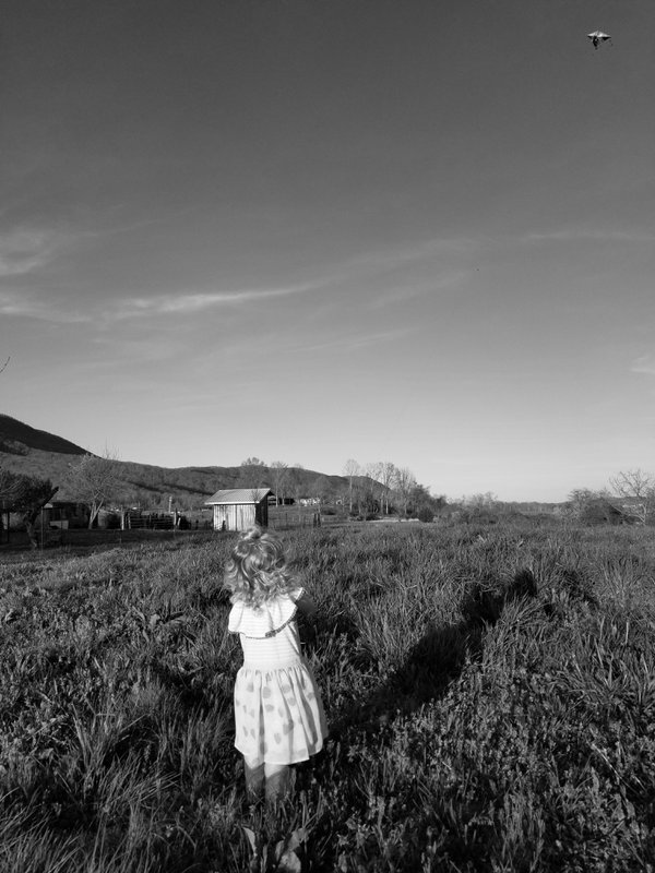 A Girl and Her Kite (black and white) thumbnail