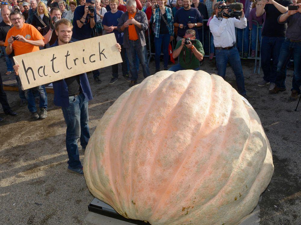 10_24_2014_pumpkin.jpg