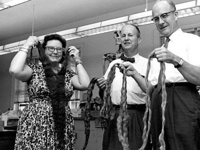 Smithsonian anthropologists hold up the world's longest beard after it was donated to the National Museum of Natural History in 1967.