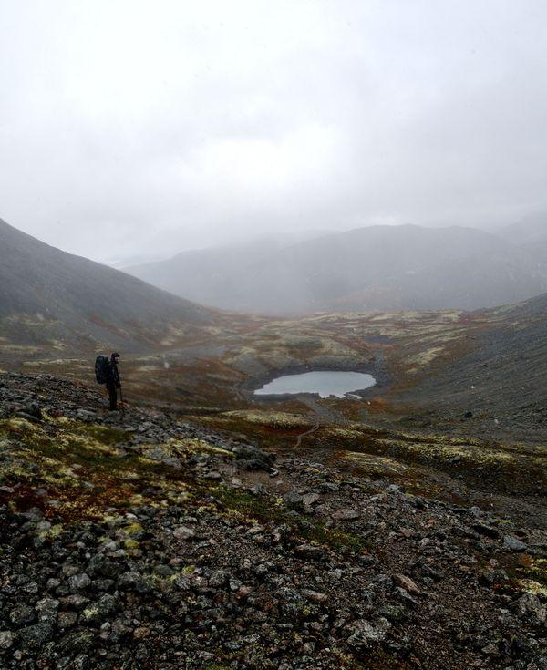 Tundra in Russian far north  thumbnail