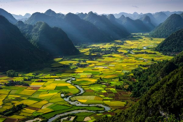 July every year, in the Bacson Valley (provincial town Bacson Langson) started nine rice, here alternating plots together to create a great scene.To take this picture we took 3 hours to climb to the t thumbnail