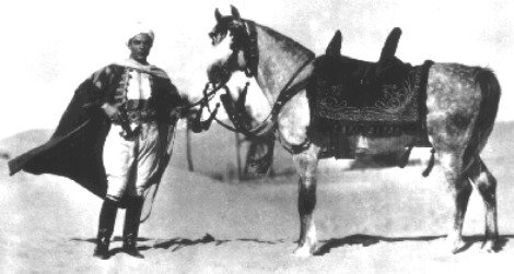 Publicity photo for The Son of the Sheik