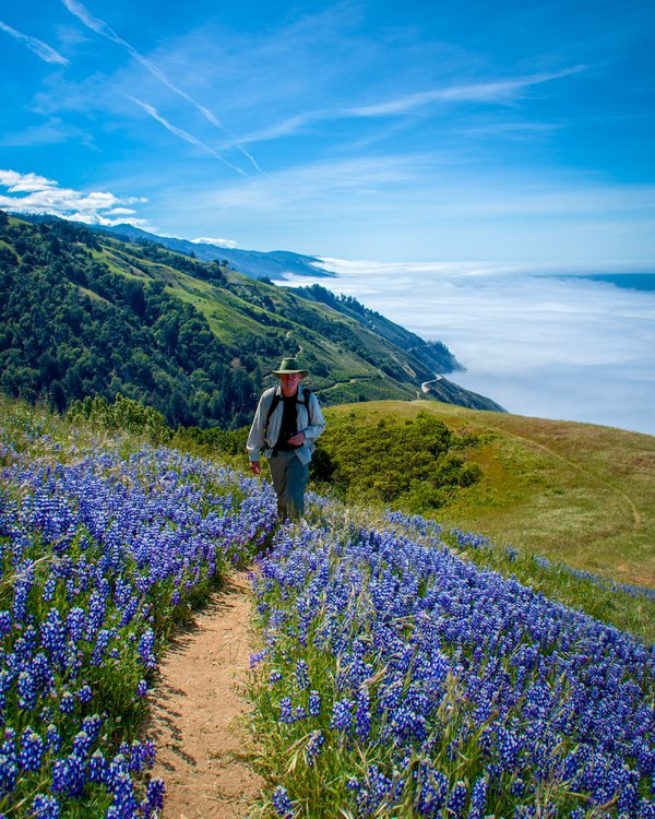 Spring on the Pacific Coast thumbnail