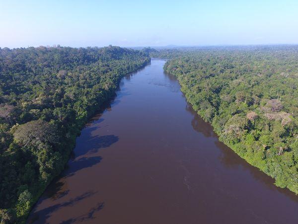 The great Jari River thumbnail