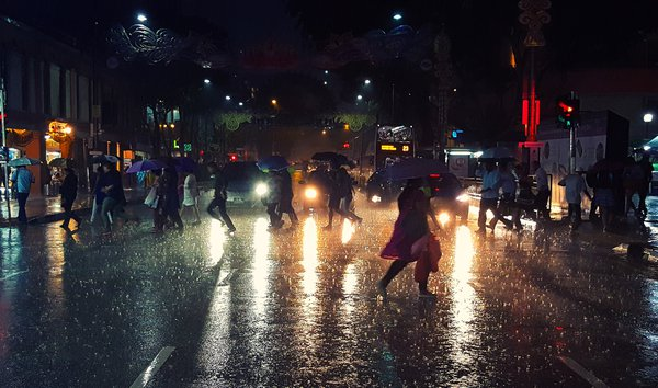 Hurry in the rain thumbnail