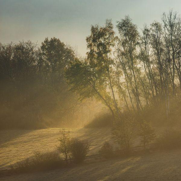 November Sunrise thumbnail