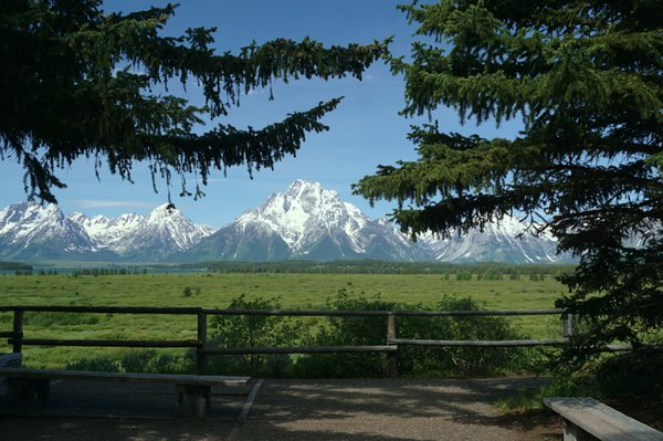 Grand Tetons embraced by nature and trees. thumbnail