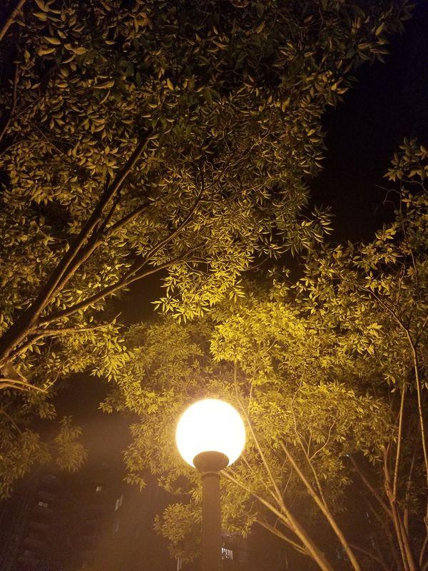Streetlamp thumbnail