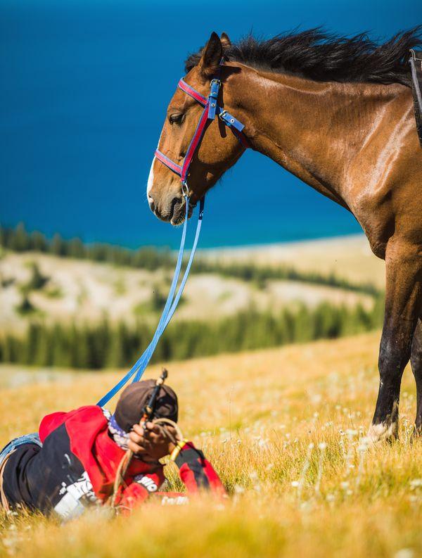 Kazakh shepherd beside the Sayram Lake thumbnail