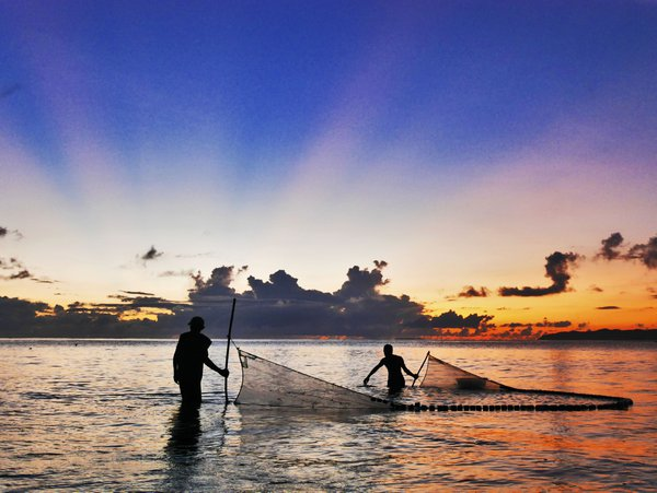 Two fishermen carefully drags their net to catch milkfish fry as the morning sun paints a colorful sky. thumbnail