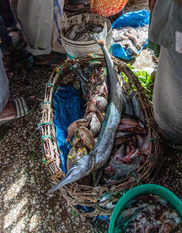 Fish goods at the famous Fish market in Stone Town, Zanzibar thumbnail