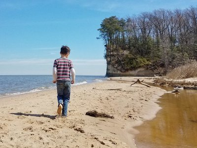 About 70 miles south of the Natural History Museum, Westmoreland State Park's Fossil Beach is a hotbed for prehistoric shark teeth.