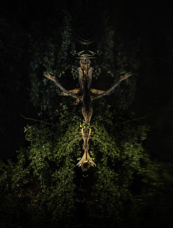 A Sylvan Spirit Rises thumbnail