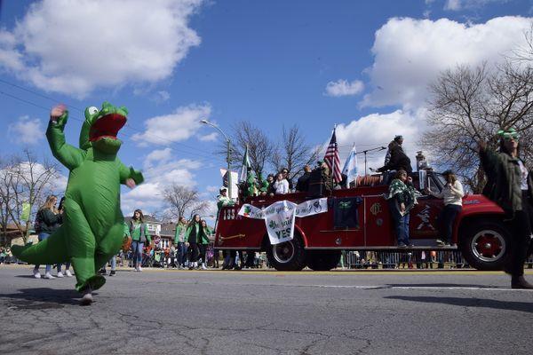 Dinosaur and the American flag  thumbnail
