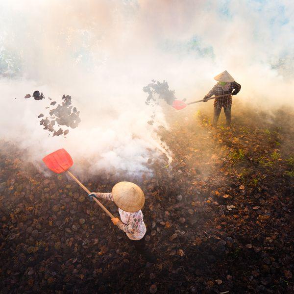Burning Dry Lotus thumbnail